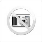 Ponteira Ph 2x25mm C/20 Peças